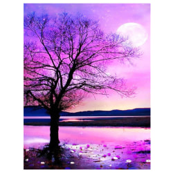 5D DIY Full Diamonds Painting Kits Arts Home Room Decorate G 30*40cm