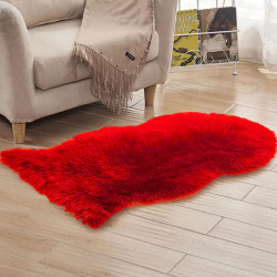 Living Room Rugs Modern Floor Shaped Carpet Home Decoration red 40*60cm