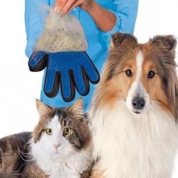 True Touch - Borsthandske - Hund - Katt Höger hand 2 Color Blå