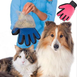 Borsthandske - Hund - Katt Höger hand Blå