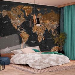 Fototapet - World: Stylish Map Size: 100x70