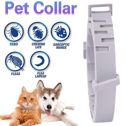 Pet Collars Anti Flea Ticks Mosquitoes Insects Dog Cat Silicone S