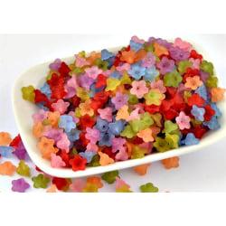 Frostade pärlor, liten blomma flerfärgad