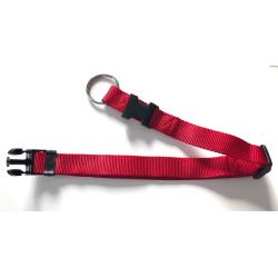 Hundhalsband 25mm 40x65 cm - Dragavlastning Röd L