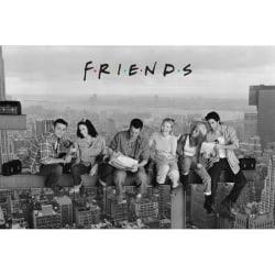 Friends, Maxi Poster - Skyscraper Svart