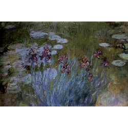 Irises and Water Lillies,Claude Monet,60x40cm Akryl