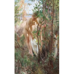 Unknow work,Anders Zorn,60x40cm multifärg