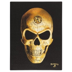 Alchemy Omega Skull Canvas Plack One Size Svart gul