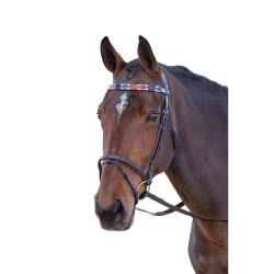 Blenheim läderpolo hästpannband ponny turkos / röd / orange / B Turquoise/Red/Orange/Blue Pony