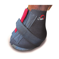 Cavallo Big Foot Horse Boot Touch Fastening Pastern Wrap 8 Svart