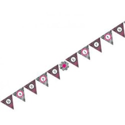 Creative Converting Pink Zebra Boutique Flag Banner One Size Ros