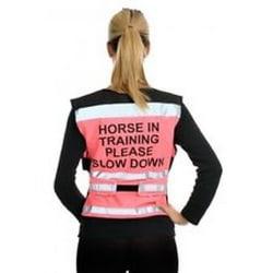 Equisafety Häst i träning Snälla långsam luften väst S Rosa