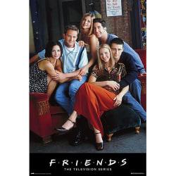 Friends Gruppaffisch One Size Flerfärgade