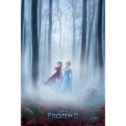 Frozen 2 Woods in dimma-affisch One Size Flerfärgade