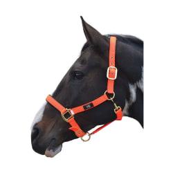 Hy Grand Prix huvudkrage Pony Varm orange