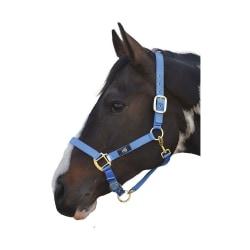 Hy Head Collar Pony Blå