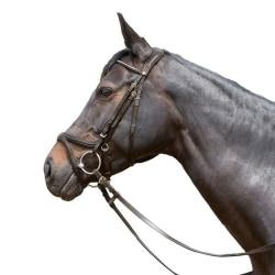 Kieffer Tara Snaffle Leather Horse Bridle Cob Brun