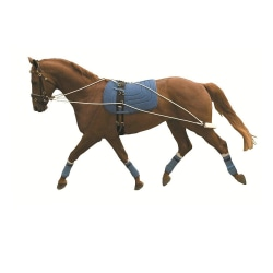 Kincade Lunging Training System One Size Kan variera