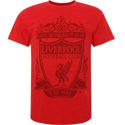 Liverpool FC T-shirt för män XXL Röd svart