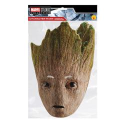 Avengers Teen Groot Party Mask One Size Flerfärgade