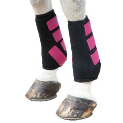 Pony Hallon