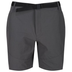 Regatta Herr Highton Mid Shorts 33in Magnet