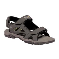 Regatta Holcombe Vent Sandals för herrar 12 UK Briar Grey / Lime