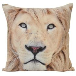 Riva Home Animal Lion Kuddeöverdrag 45x45cm Mång