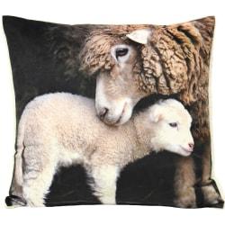 Riva Home Sherpa Lamb Cushion Cover 50x50cm Mång