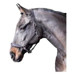 Whitaker Ready to Ride Leather Headcollar Pony Svart