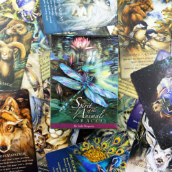 Spirit of the Animals Oracle by Jody Bergsma Oracle Cards Playi one size