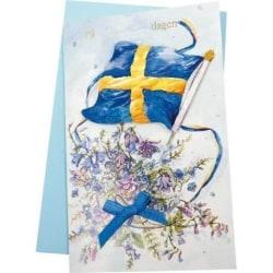 Sverigekort med sedelficka