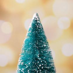 Christmas Tree New Year''s Mini Small Pine Tree Desktop Mini Ch F