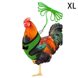 sommar cool mesh katt kyckling sele koppel liten hund valp harne green XL