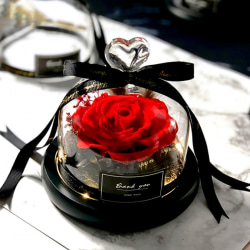 Eternal Rose With Glass Cover Valentine's Christmas Gift Red
