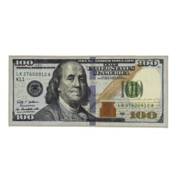 Rug Carpet Dollar Bill Print Floor Mat