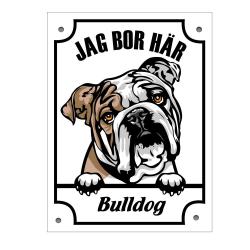 Plåtskylt Jag bo här Bulldog Kikande hund skylt  Vit