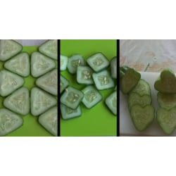 "Fruit mold ""Square""-shape your fruit(see all our fruit molds) Vit S"