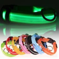 LED Hundhalsband / Halsband för Hund med Reflex - Flera färger Grön (M)