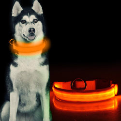 LED Hundhalsband / Halsband för Hund med Reflex - Orange (S) Orange