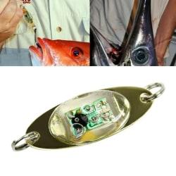 LED blinkande locksked fiskedrag