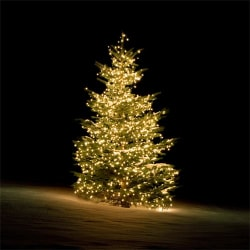 Julgransbelysning DELTACO SMART HOME WiFi inomhus/utomhus