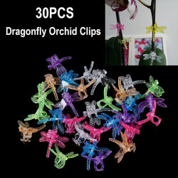 30st Dragonfly Orchid Clips Orchid Grower Support Garden Plant one size
