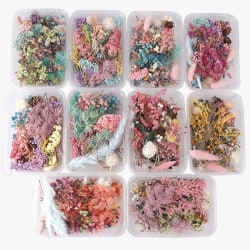 Dried Flowers Natural Floral Art Craft Scrapbooking Resin Jewel
