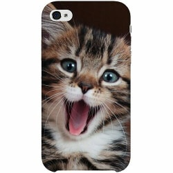 Apple iPhone 4 / 4s Thin Case Surprised Kitten