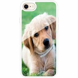 Apple iPhone 8 Vitt Mobilskal med Glas Hund