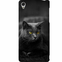 Sony Xperia Z3 Thin Case Black Cat