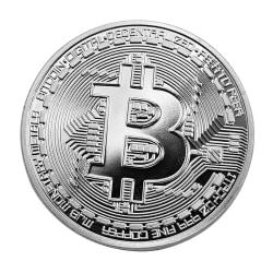 Silverfärgad Bitcoin lyckopeng Silver