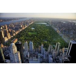 Fototapet Central Park View  250x186cm