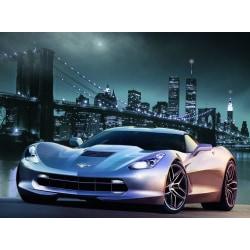 Fototapet Corvette 500x280cm